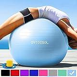 arteesol Gymnastikball Pilates Ball 45cm / 55cm / 65cm / 75 cm inkl. Pumpe Anti-Burst Sitzball für Yoga Exercise Fitness Physiotherapie (5 Farben) (Aqua, 55cm)