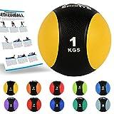 MSPORTS Medizinball 1 kg – Professionelle Studio-Qualität inkl. Übungsposter Gymnastikbälle